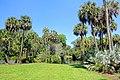 Lawn - Bok Tower Gardens - DSC02256.jpg