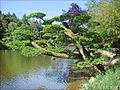 Le lac (Parc oriental, Maulévrier) (7323075590).jpg