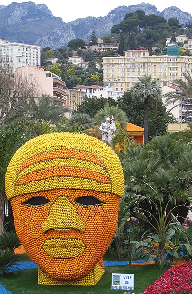 File:Lemon head in Menton.jpg