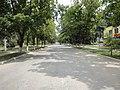 Leova, Moldova, Independence street. - panoramio.jpg