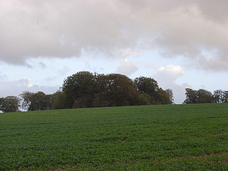 Aldbourne - Lewisham Castle