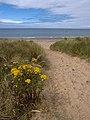 Lhen beach. Isle of Man. - geograph.org.uk - 32064.jpg