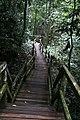 Limbang, Sarawak, Malaysia - panoramio (6).jpg