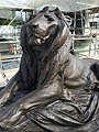Lion After Conservation (28381592326).jpg