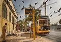 Lisboa trams.jpg