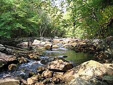 Little River in Fall.jpg