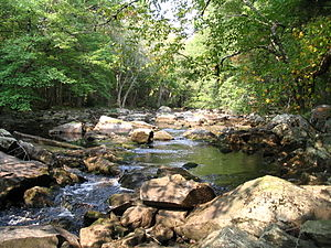 Little River in Fall.jpg