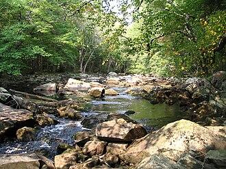 Kejimkujik National Park - Little River