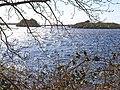 Long Island and Round Island, Mochrum Loch - geograph.org.uk - 166482.jpg