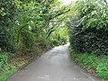 Looking along Little Lane - geograph.org.uk - 790549.jpg