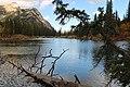 Lorette ponds Kananaskis Alberta Canada (29810548001).jpg