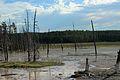 Lower Geyser Basin 30.JPG