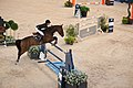 Luciana Diniz & Lennox 180 - 2013 Longines Global Champions Tour-2.jpg