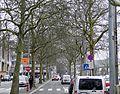 Luxembourg, Glacis allée Scheffer (3).JPG