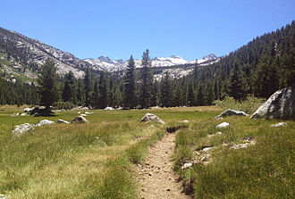 Lyell Canyon - Lyell Canyon valley floor, on the John Muir trail. Donohue Peak in the background