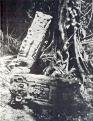 Maler Upper Usumatcintla Plate 4 Seibal Stela 2.png