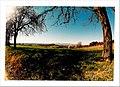 March Spring - Master Seasons Rhine Valley Photography 1990 - panoramio (2).jpg