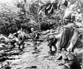 Marines on Okinawa.jpg