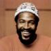 Gaye in 1973
