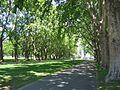 Melb CBN Carlton Gardens 2.jpg