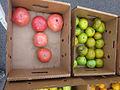 Mid-City Green Market 6-28-2012 9.JPG