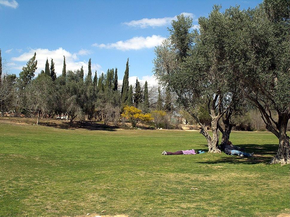 Midreshet Ben Gurion