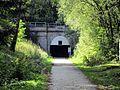 Milseburgradweg ostportal tunnel ds wv 10 2011.jpg