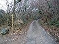 Minor road through Hitchcombe Wood - geograph.org.uk - 1116660.jpg