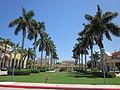 Mizner Park Boca June 2010 Palms.jpg