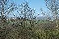 Montpeyroux (Puy-de-Dôme) Paysage 031.jpg