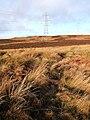 Moorland near Wolfhole Letch - geograph.org.uk - 304643.jpg