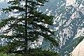 Mount Hua, May, 2018-13.jpg