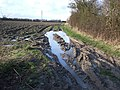 Mud, mud, glorious mud ^ - geograph.org.uk - 318164.jpg