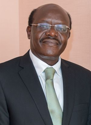 Mukhisa Kituyi - Mukhisa Kituyi in 2013.
