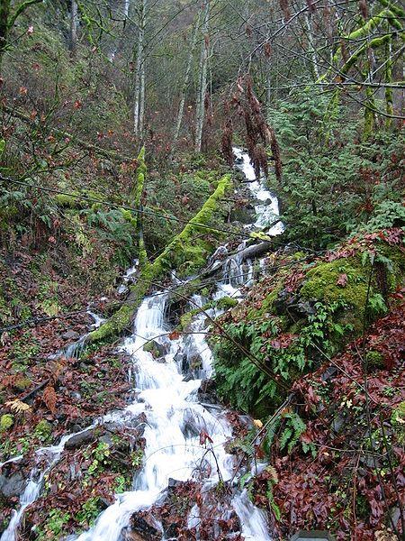 File:Multnomah Falls creek.JPG