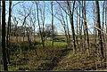 Nagykálló, 4320 Hungary - panoramio (8).jpg