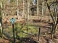 Naturdenkmal Krautschüssel - panoramio.jpg