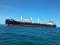 Navire AFRICAN LILY en mer.jpg