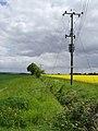 Near Staddlethorpe - geograph.org.uk - 809324.jpg