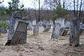 Nemyriv Jewish Cemetery 1.jpg