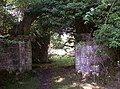 Newminster Abbey ruins.jpg
