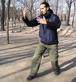 Xing Yi Quan - Shifu Nitzan Oren, demonstrating a Zhan Zhuang posture which combines the San Ti stance and a Hun Yuan hand variation