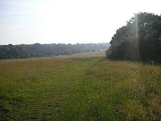 Nomansland, Hertfordshire