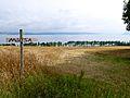 Norway's largest lake – this way!.jpg