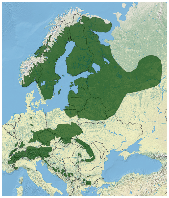 Norway Spruce Picea abies distribution map 2