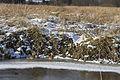 Npr brouskuv mlyn 30 prosinec 2014 21.jpg
