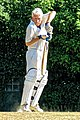 Nuthurst CC v. Henfield CC at Mannings Heath, West Sussex, England 068.jpg