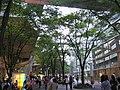 Oasis near yuuraku-cho station - panoramio.jpg