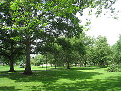 Oberlin College - Tappan Square.jpg