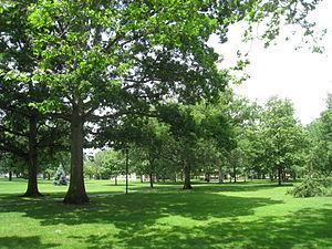 Tappan Square - Image: Oberlin College Tappan Square